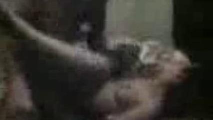 Проститутка из Узбекистана UZBAK.RU